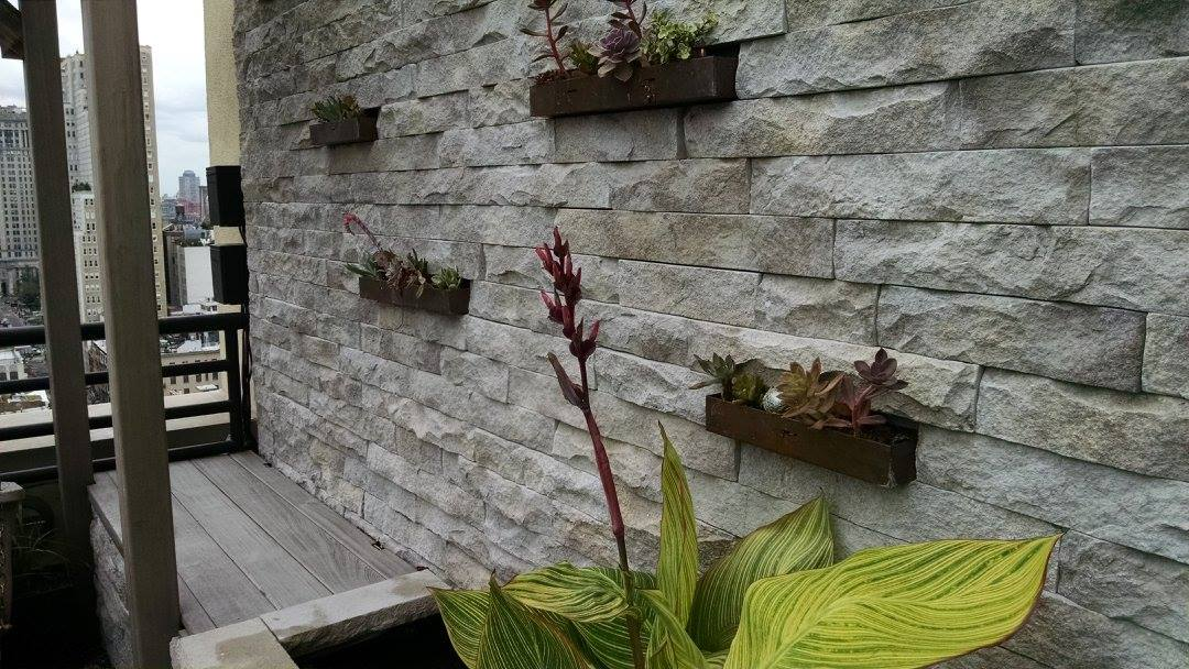 Planter_wall_1.jpg