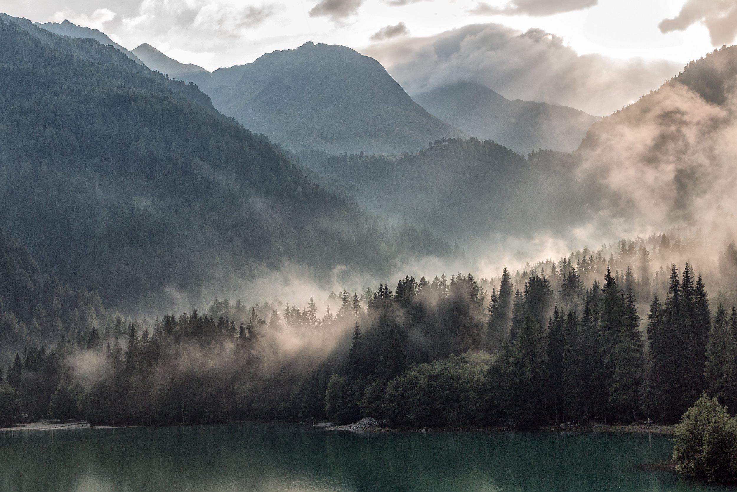 picography-morning-mist-tree-mountains-clouds-eberhard-grossgasteiger.jpg