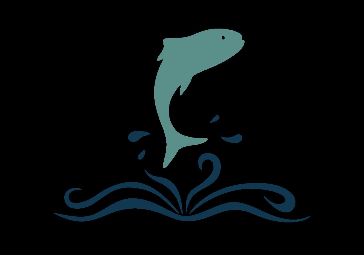 SeafoodStoriesLogoNO TEXTFullColorOnTransparent.png