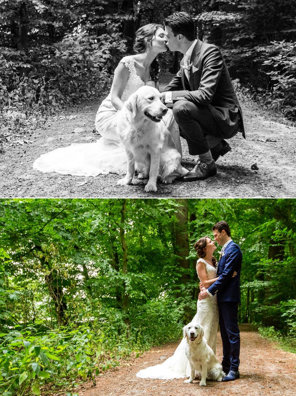 trouwreportage met hond