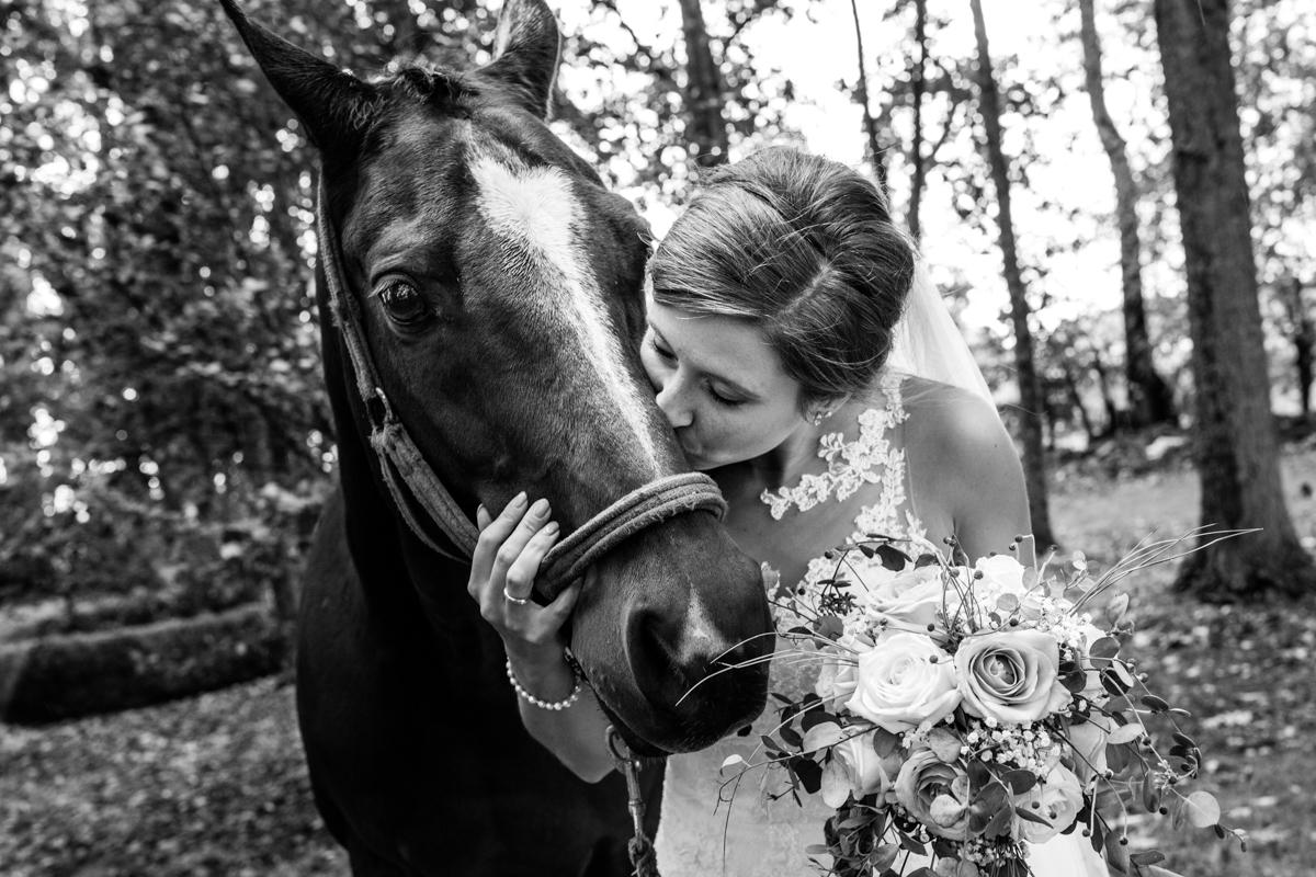paard en bruid