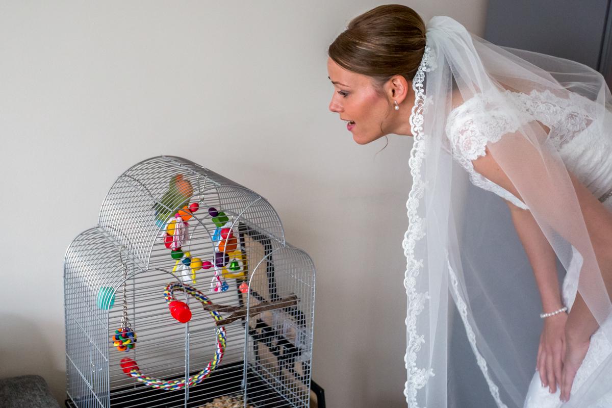 bruid en parkiet