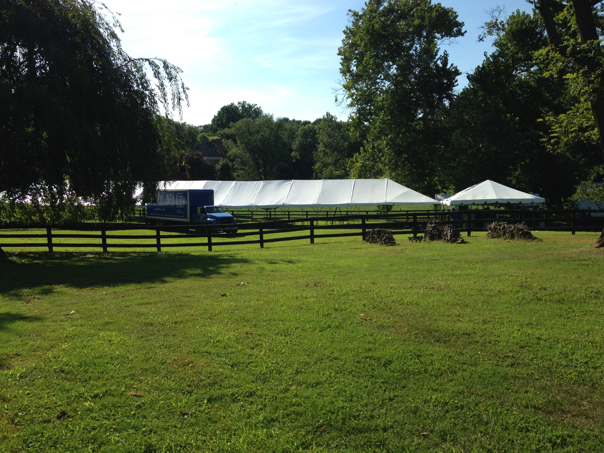 DC-Boutique-Wedding-Planner-Backyard-Potomac-Wedding-Tent.jpg