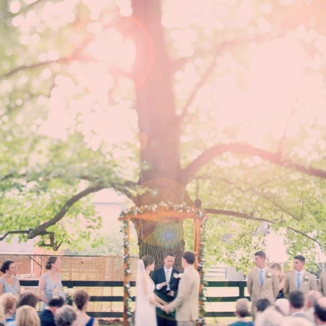 DC-Boutique-Wedding-Planner-Backyard-Potomac-Wedding-Ceremony.jpg