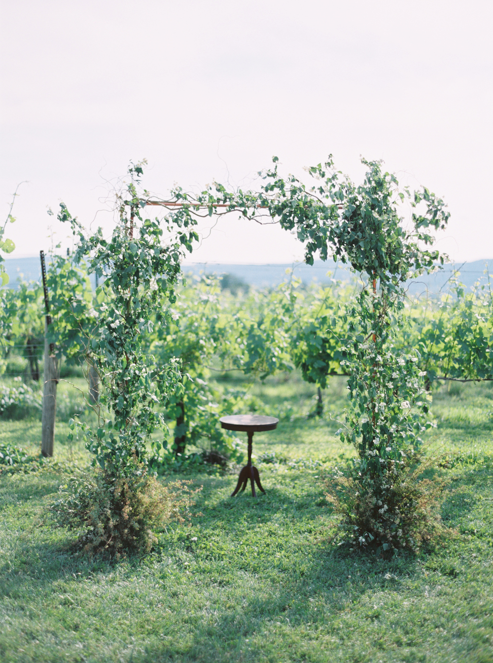 Organic Romantic Breaux Vineyard DC Wedding Planner A Griffin Events 516.jpg