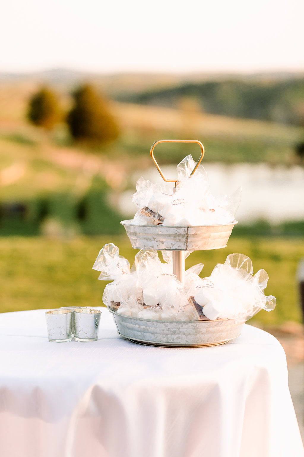 Smores DC Wedding Planner Stone Tower Winery A Griffin Events1079.jpg