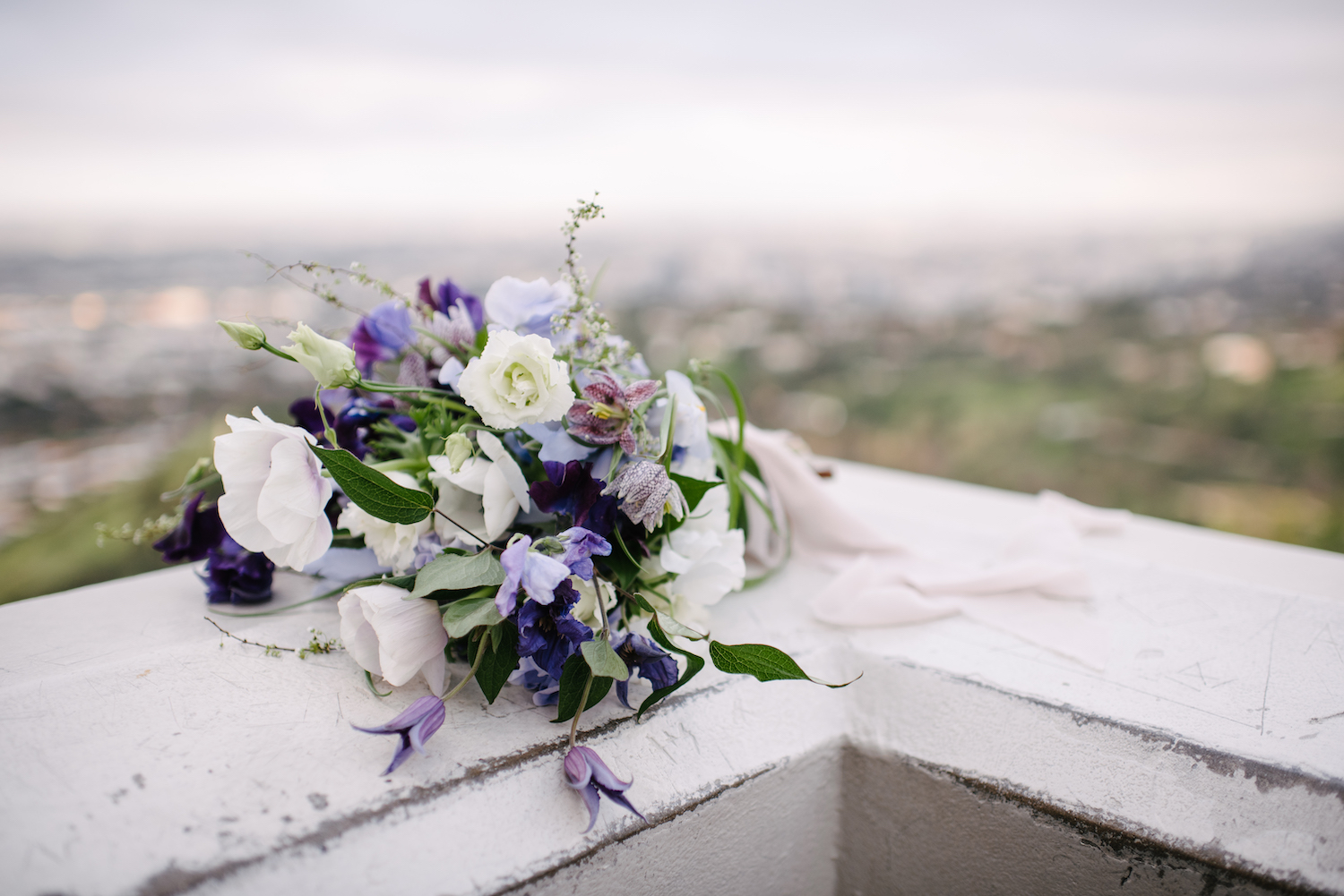 Griffith-Observatory-Galactic-Wedding-AGriffin-events156.jpg