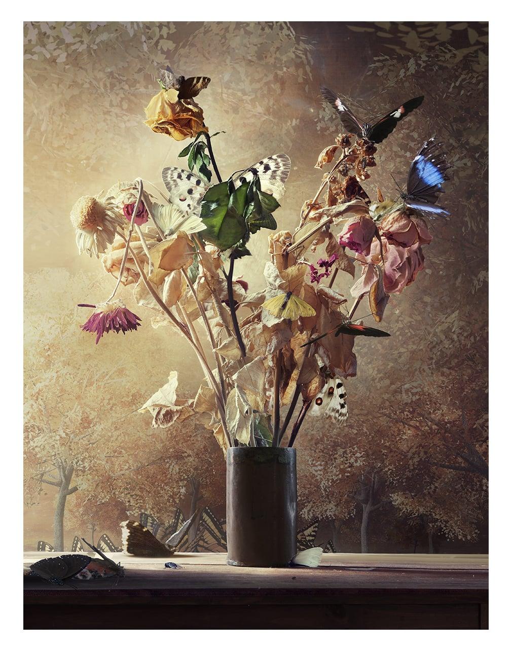 Still life with butterflies