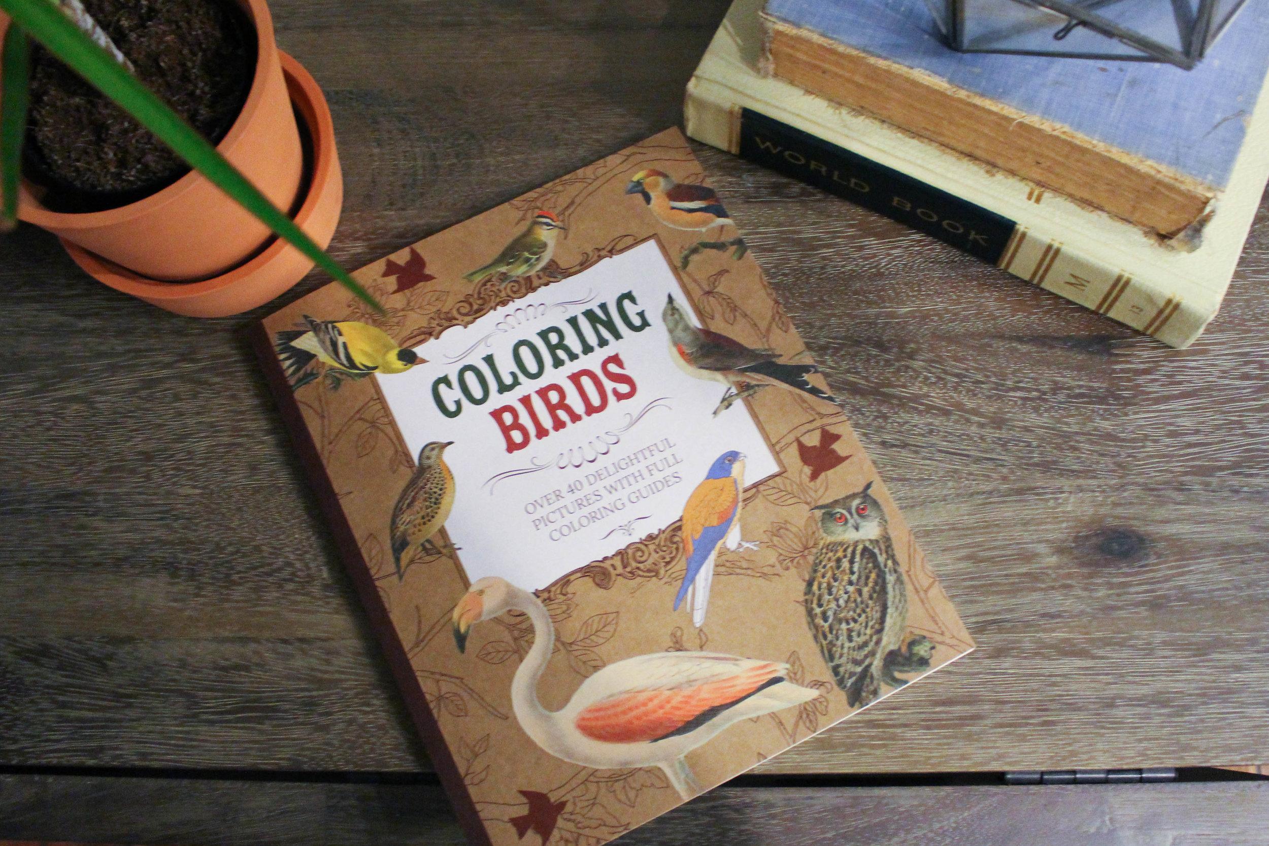 BirdPics-4207.jpg