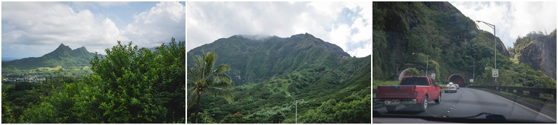 scenic hawaii from road candice macdonnell photography