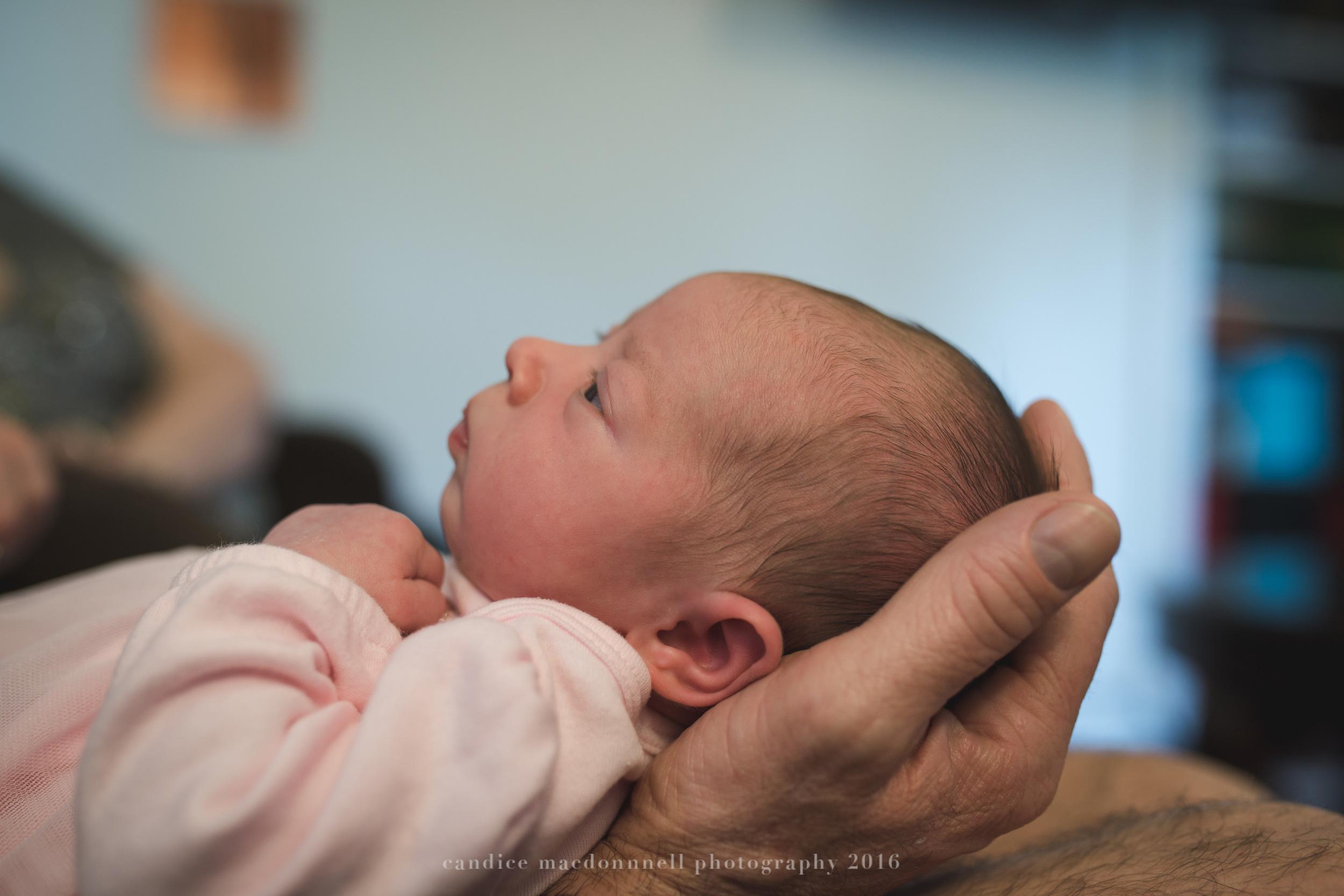 newborn baby girl in hands lifestyle photograph oahu hawaii photographer