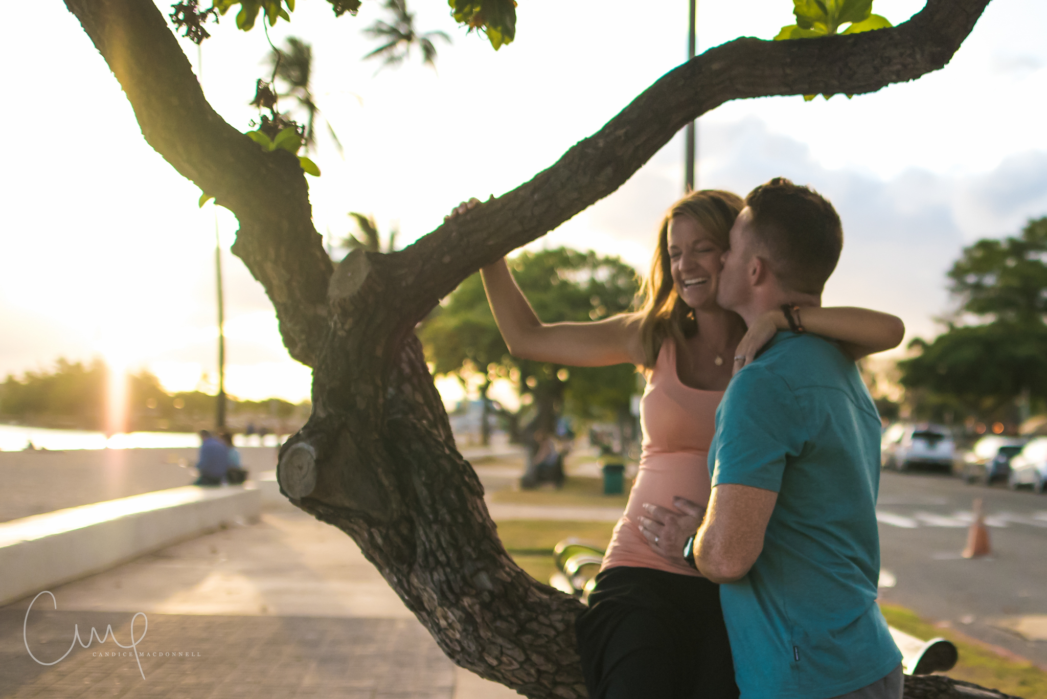 sitting in tree honolulu ala moana park maternity lifestyle photo sesion oahu hawaii photographer