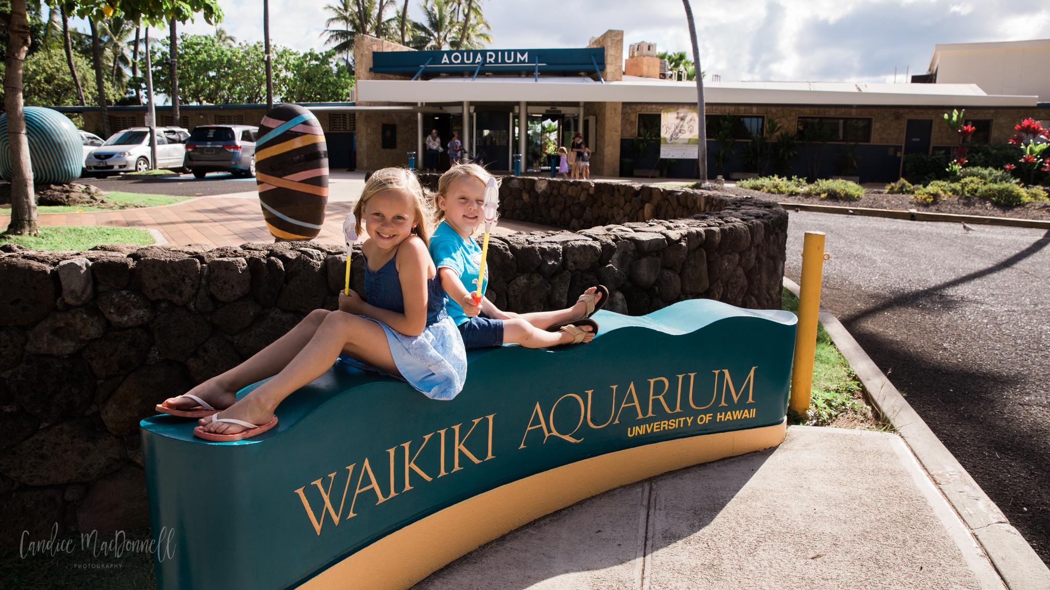 kids at waikiki aquarium honolulu hawaii