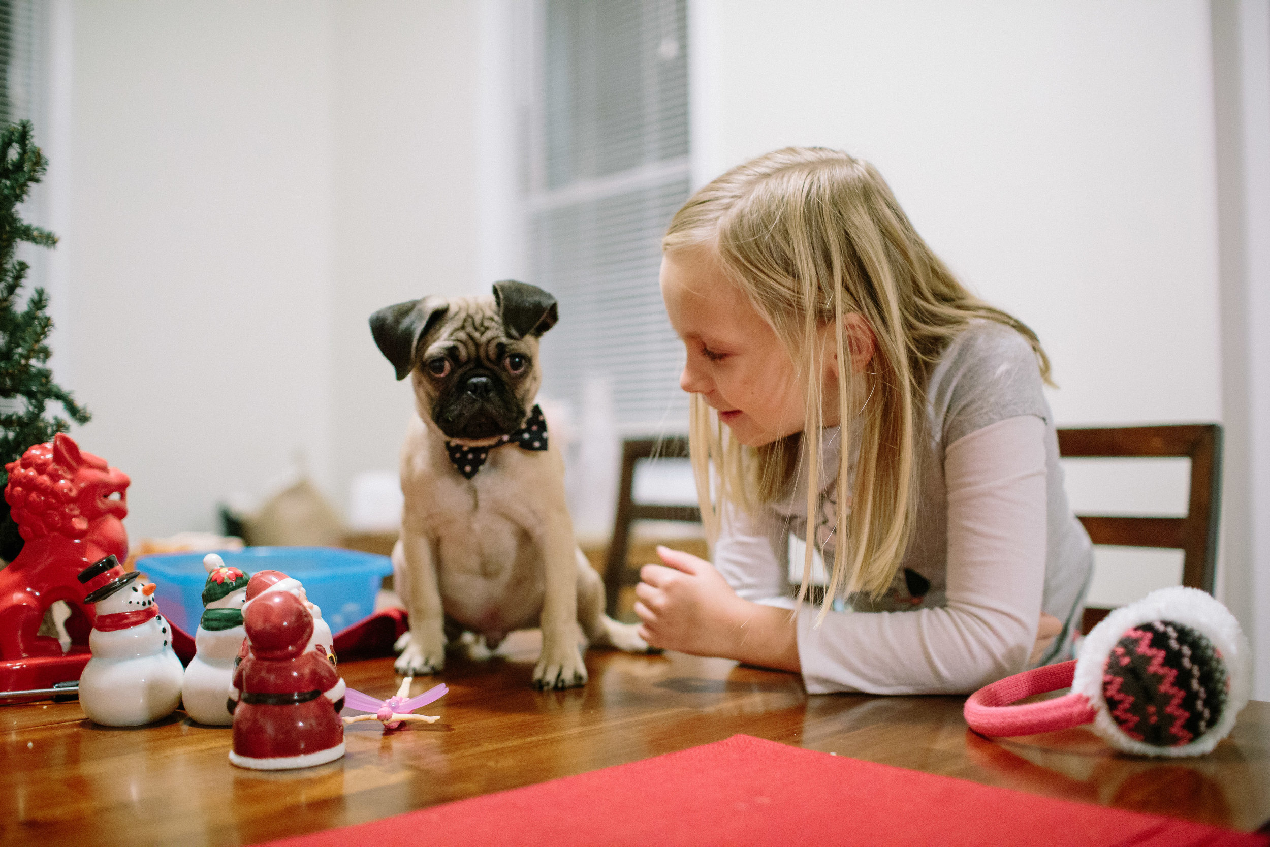 lifestyle photography of little girl and puppy playing on kitchen table