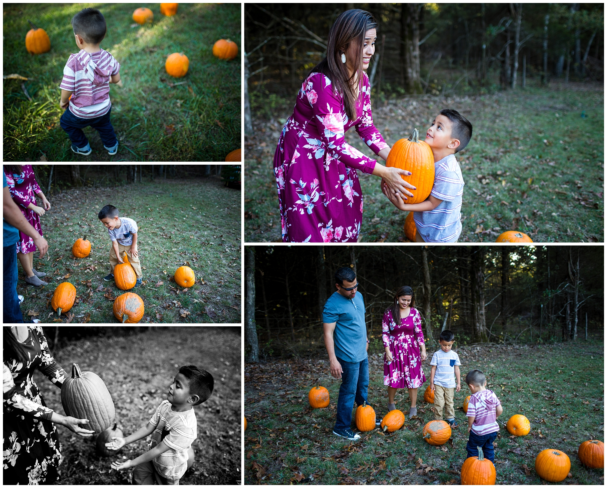 family playing at pumpkin patch documentary photography