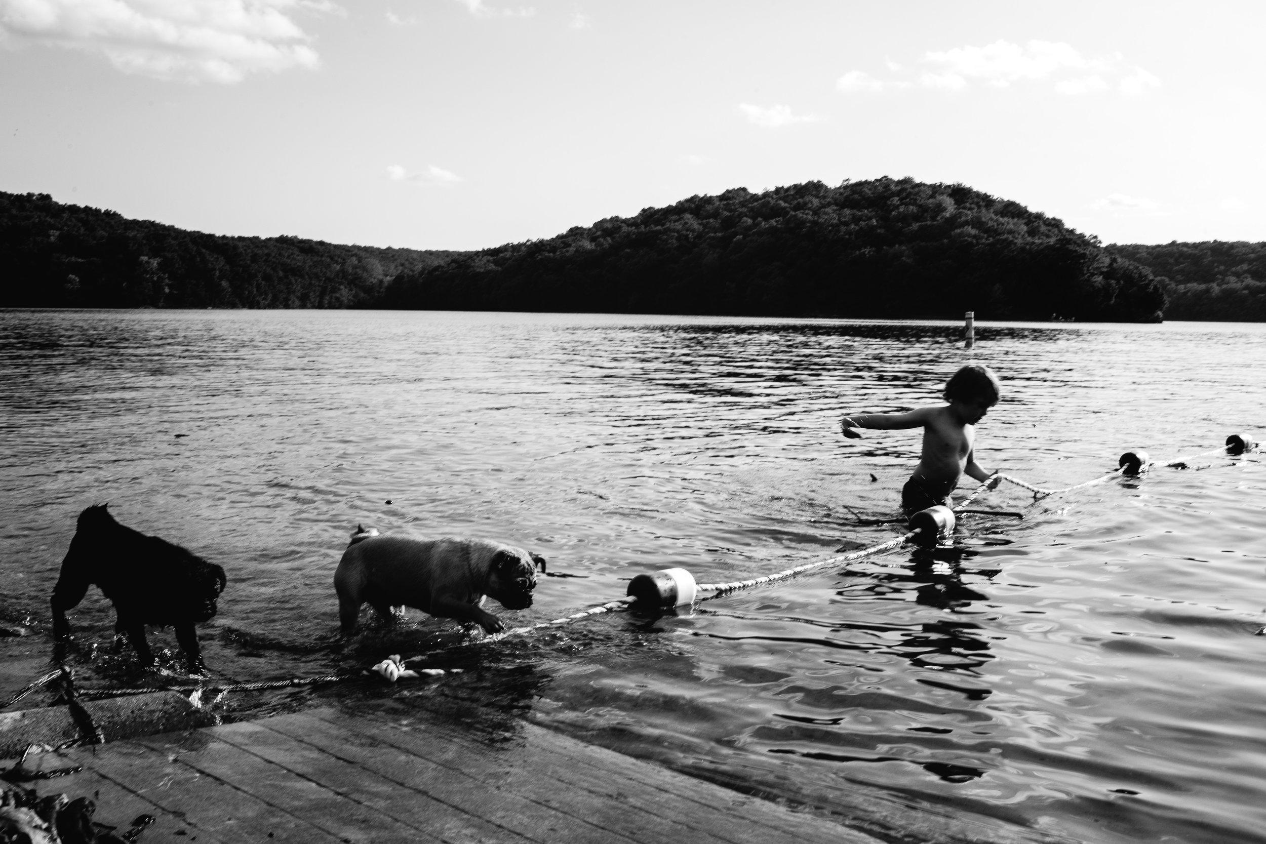 boy with pug dogs swimming waynesville missouri