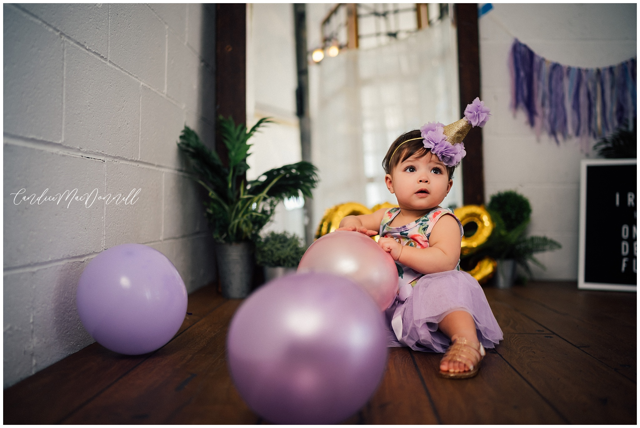 Washington DC birth and lifestyle photographer