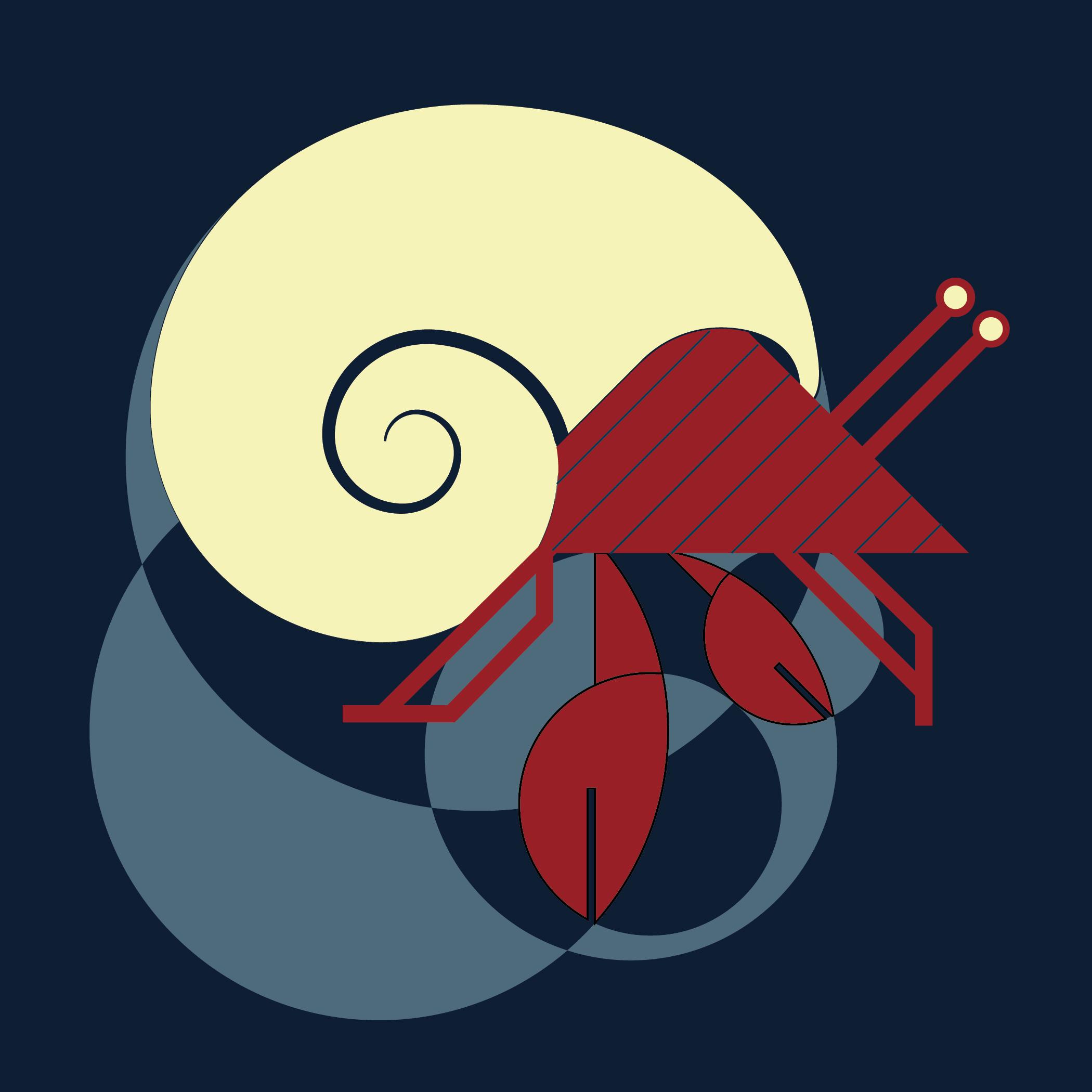 hermit crab-01.jpg