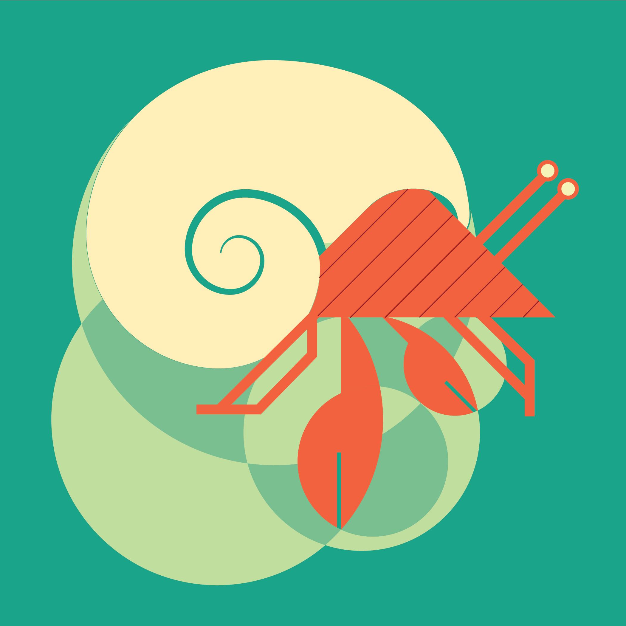 hermit crab-06.jpg