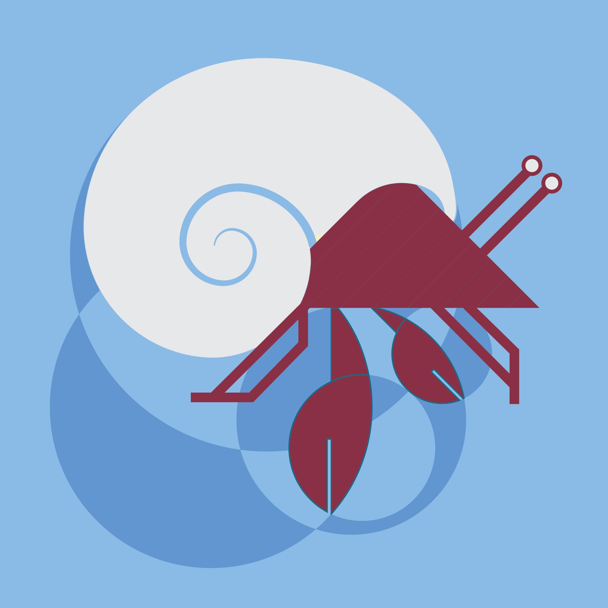 hermit crab-07.jpg