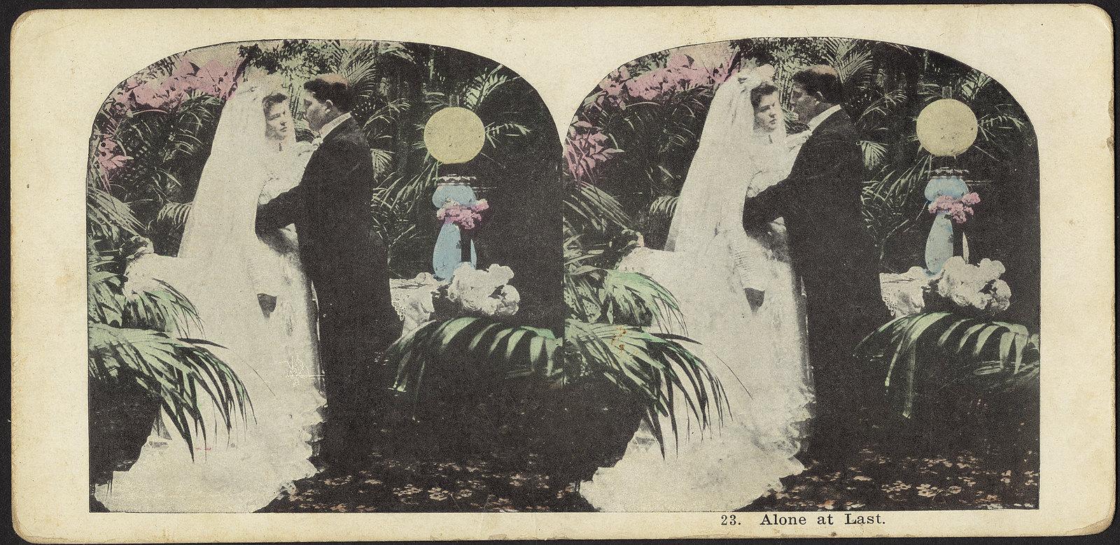Alone at last    c. 1850-1920   stereograph (photomechanical print)
