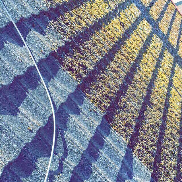 Mose-begrodd tak fikk motstand av vår høytrykksspyler på Levanger igår. Ønsker du lengre levetid på taket ditt, ta kontakt med oss for gratis befaring.