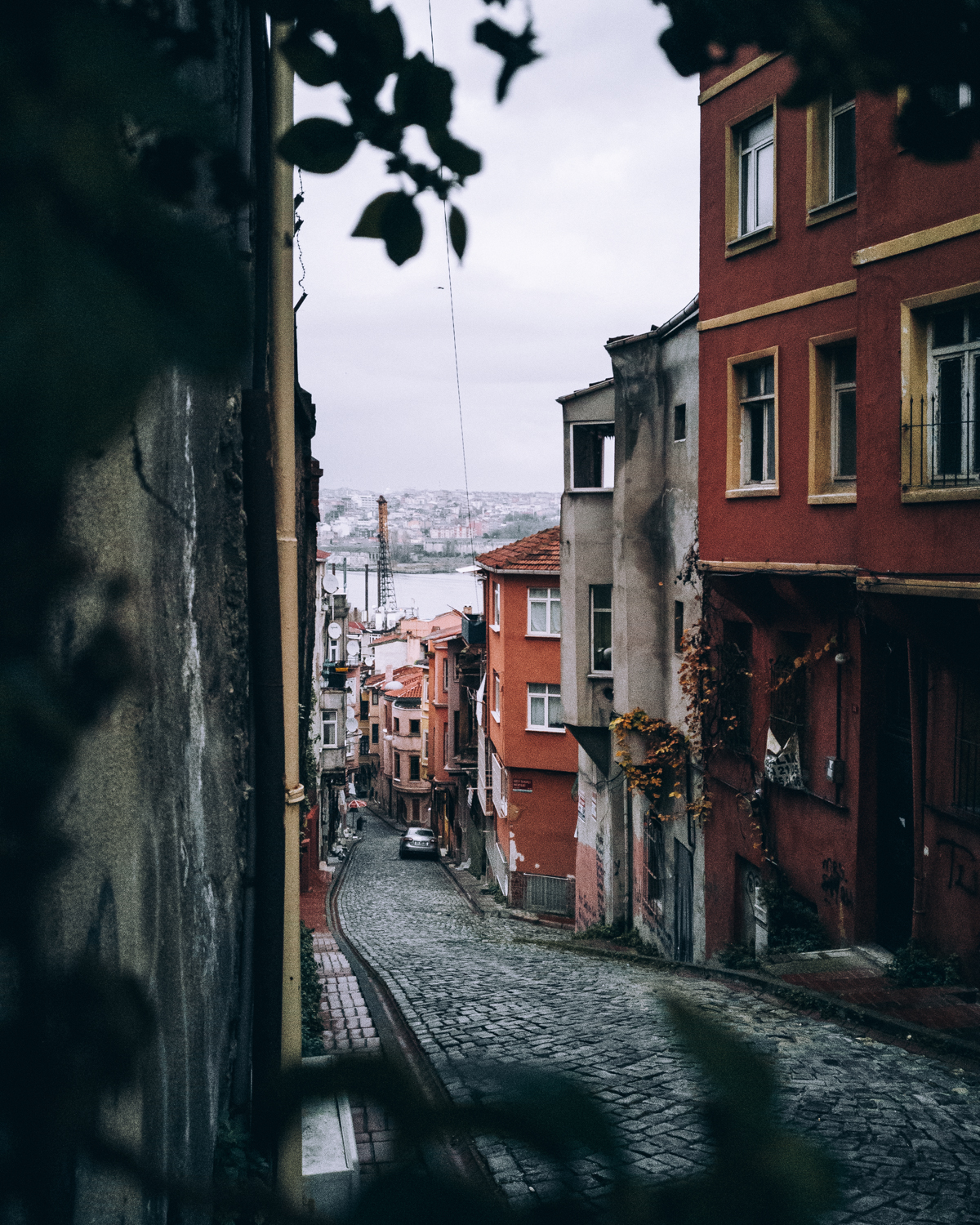 This image I photographed in Istanbul through a plant that was growing conveniently on this wall. By framing it in such a way, this seemingly uninteresting street became a place of interest.
