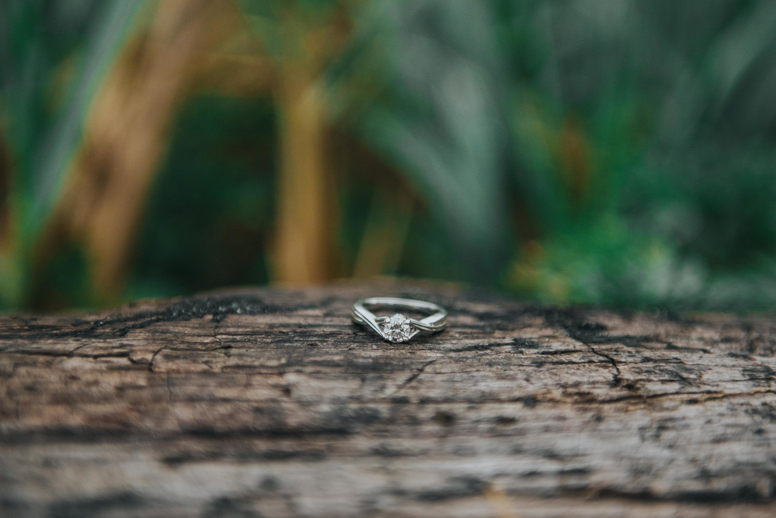 Whidbey-Island-Engagement (49 of 62).jpg