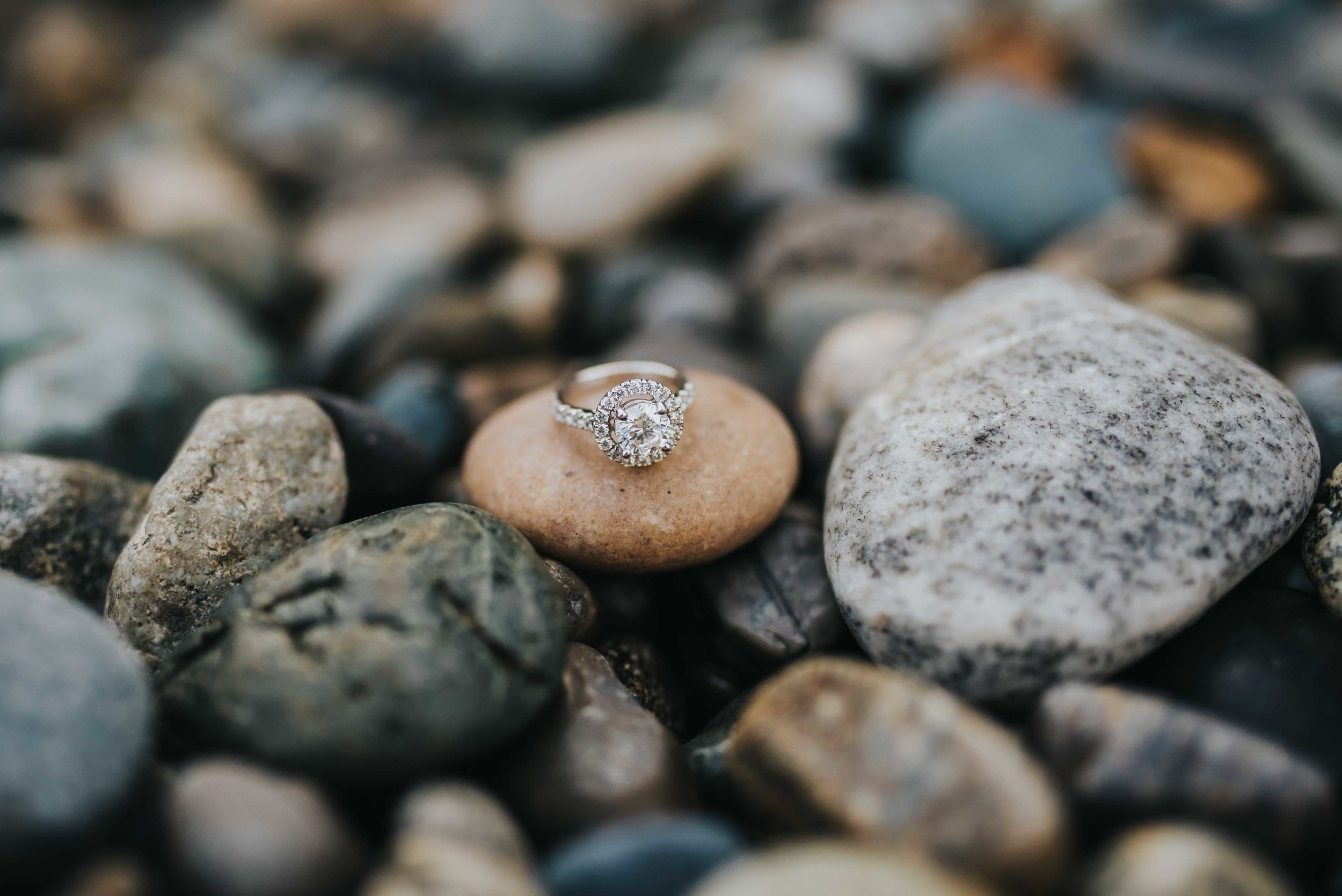 Whidbey-Island-Engagement-Photos-7.jpg