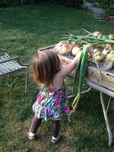 Rachael drying fresh onions