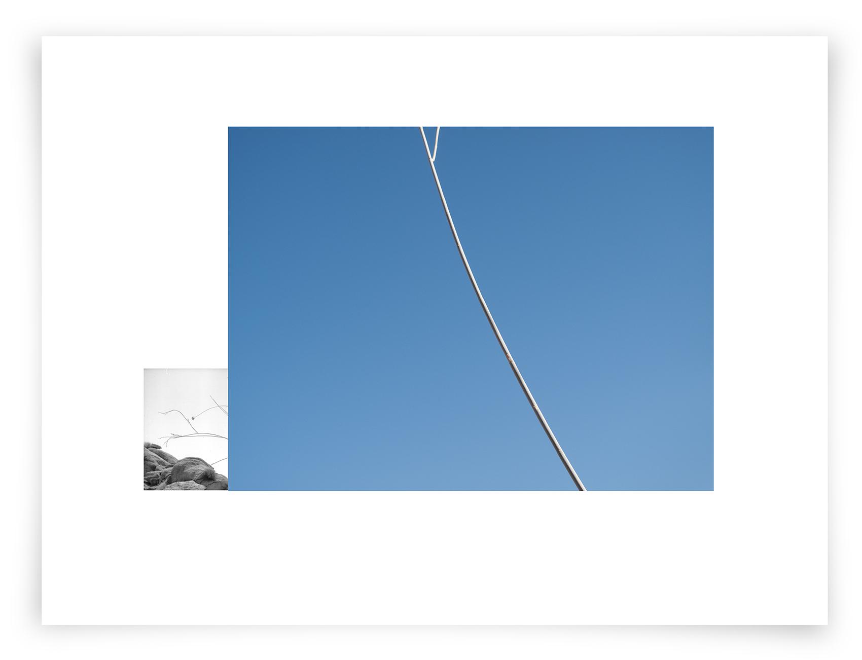 The Cabeza Prieta Milkweed (AA01 140317)   24 x 32 in (61 x 81 cm)