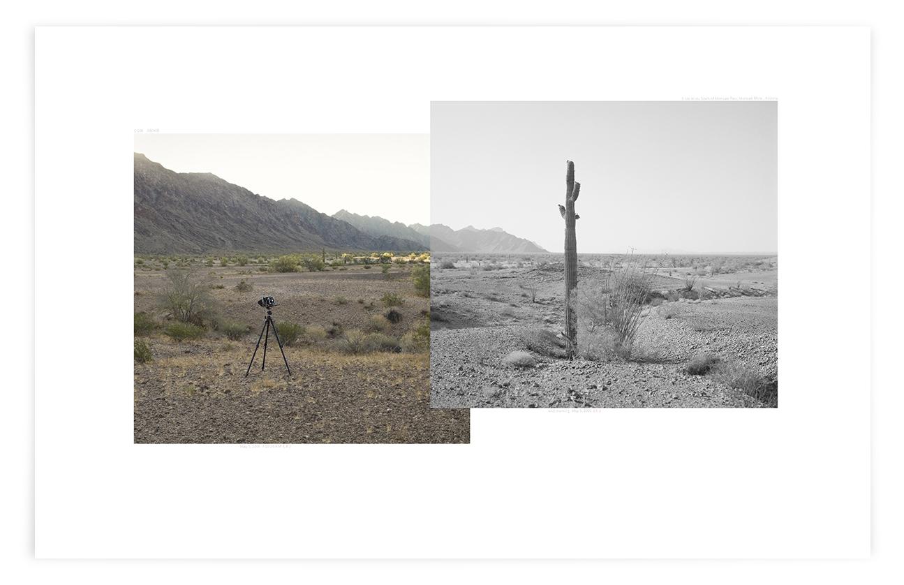 The Mohawk Valley Saguaro (CG06 080408)   24 x 35 in (61 x 89 cm)