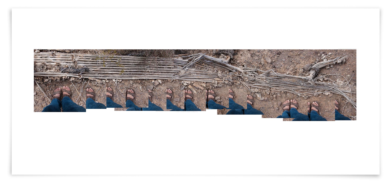 The Apache Tear Saguaro (CG16 091018)   24 x 70 in (61 x 178 cm)