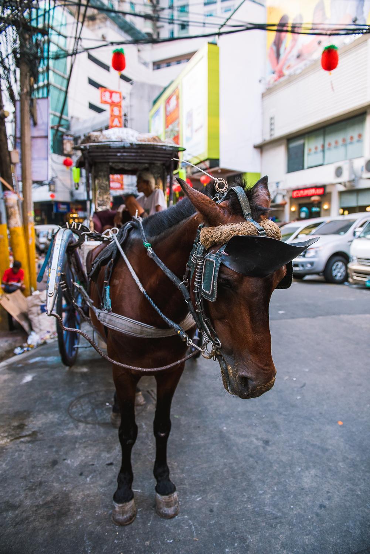 2016 Philippines Trip - Part 3 - Manila LR-35.jpg