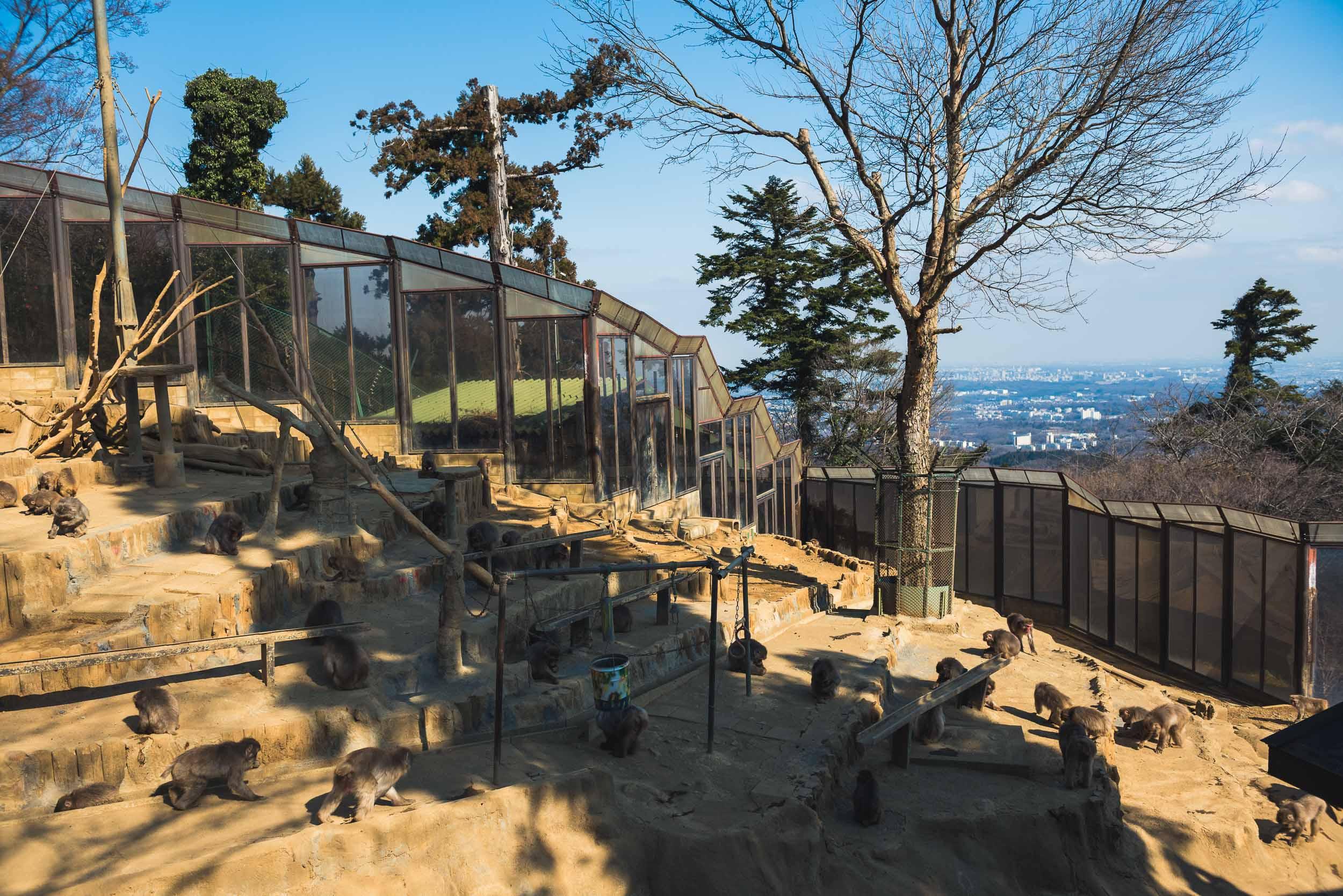 Japan Trip Part 2 Tokyo-225.jpg