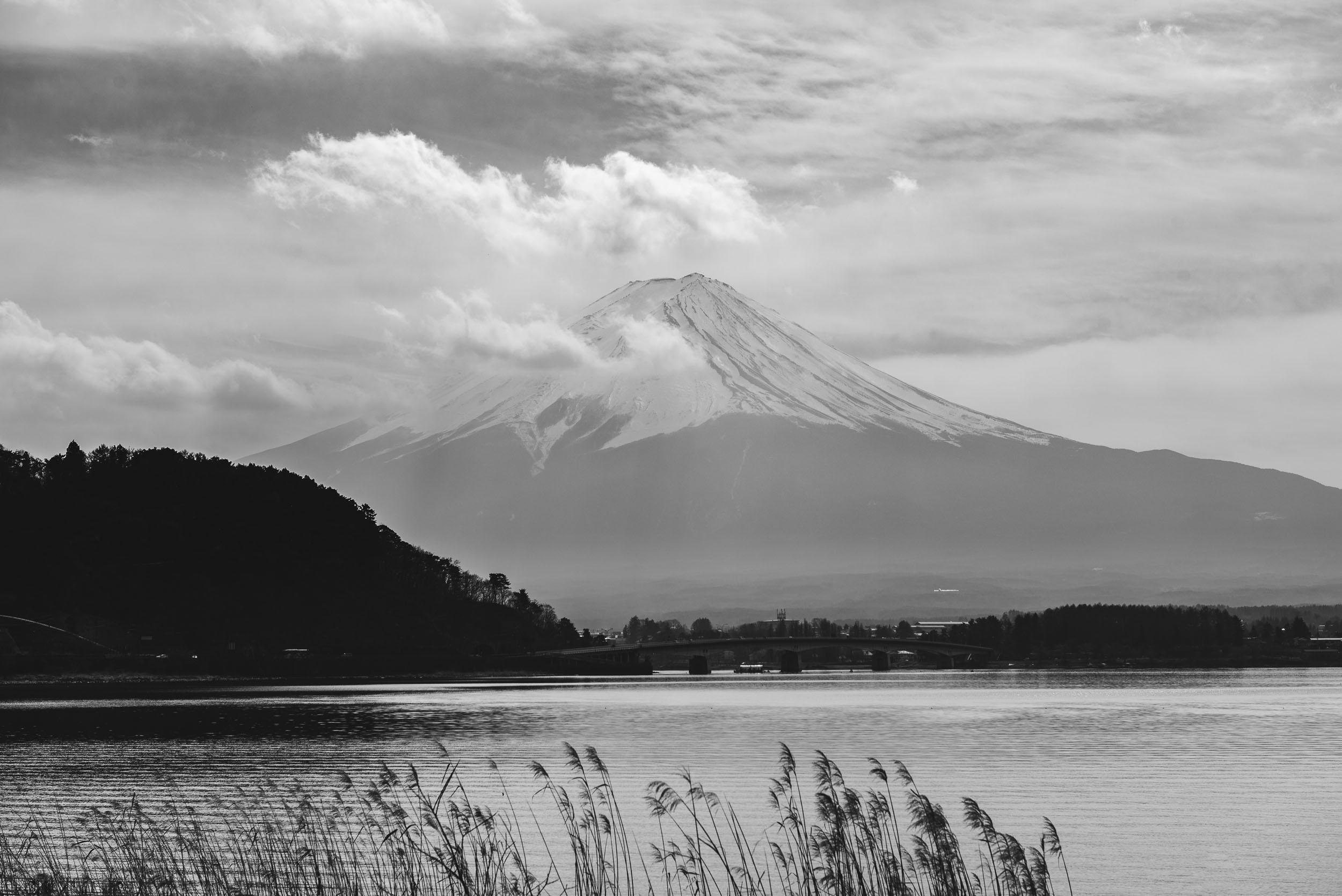 Japan Trip Part 2 Tokyo-244.jpg