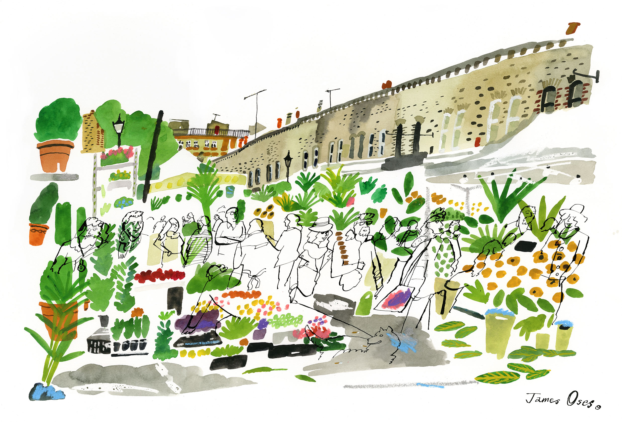 Columbia Road Flower Market by James Oses