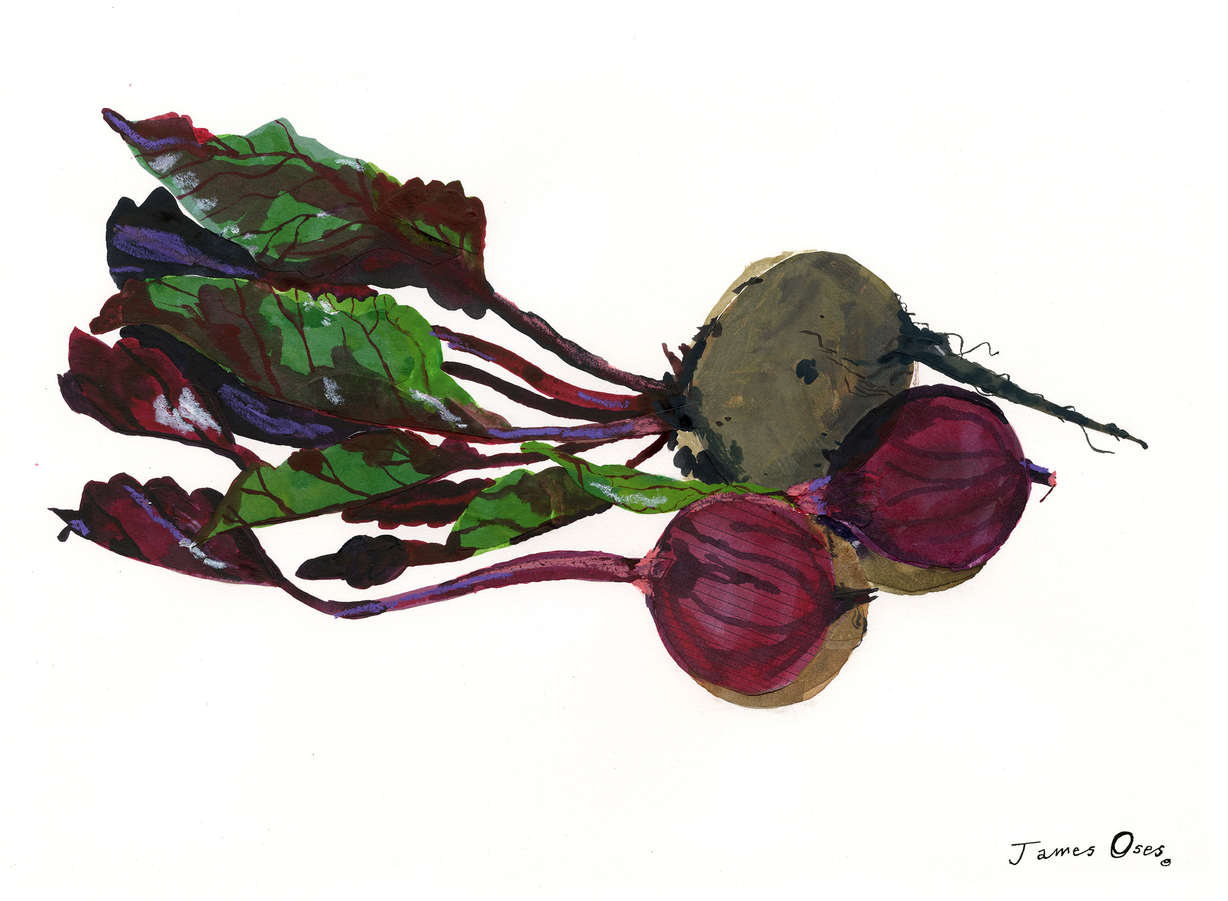 Beetroot by James Oses