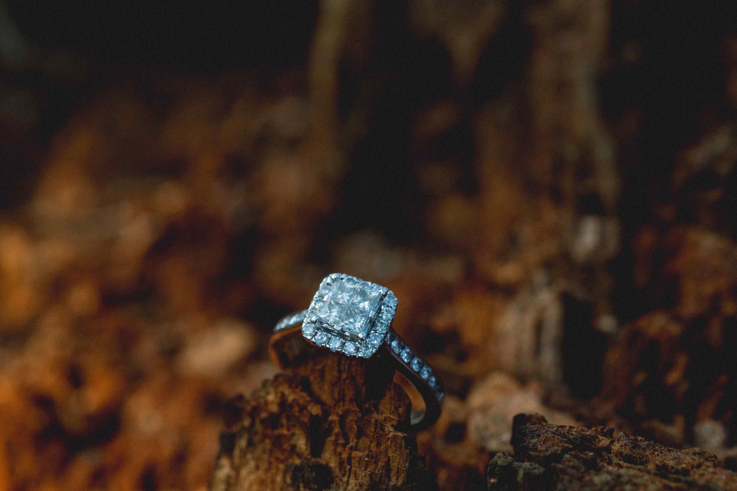 Engagement Photos (34.1 of 151).jpg