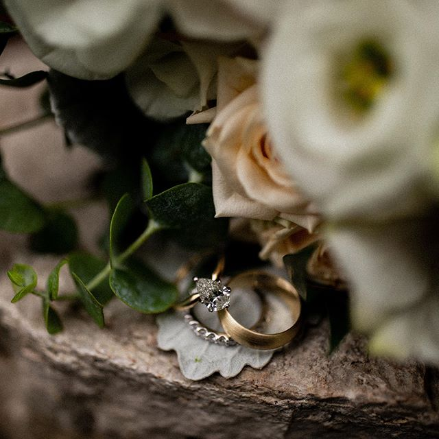Loved Kayleigh + Kevins classic wedding bands last Saturday! We've had so many brides rocking a pear shape diamond lately... do we spot a ring trend for 2019? 💍🥰✨ • • • • • #weddingring #classic #shadow #botanical #floral #flowermagic #wisconsinbride #bride #realbride #weddinginspo #risingtidesociety #wibride #wisconsinwedding #wisconsinblogger #engaged #midwestphotographer #justalittleloveinspo #loveintentionally #weddingphotography #milwaukeeweddingphotographer #wisconsinweddingphotographer #thatsdarling #huffpostido #wildhairandhappyhearts #belovedstories #muchlove_ig #wildcrazylove #unconventionaltogs #lookslikefilm #junebugweddings