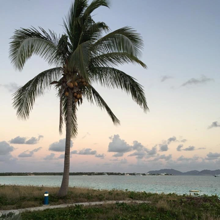 My last vacation (Anguilla, March 2015). The view from my apartment looks just like this- no, not at all.