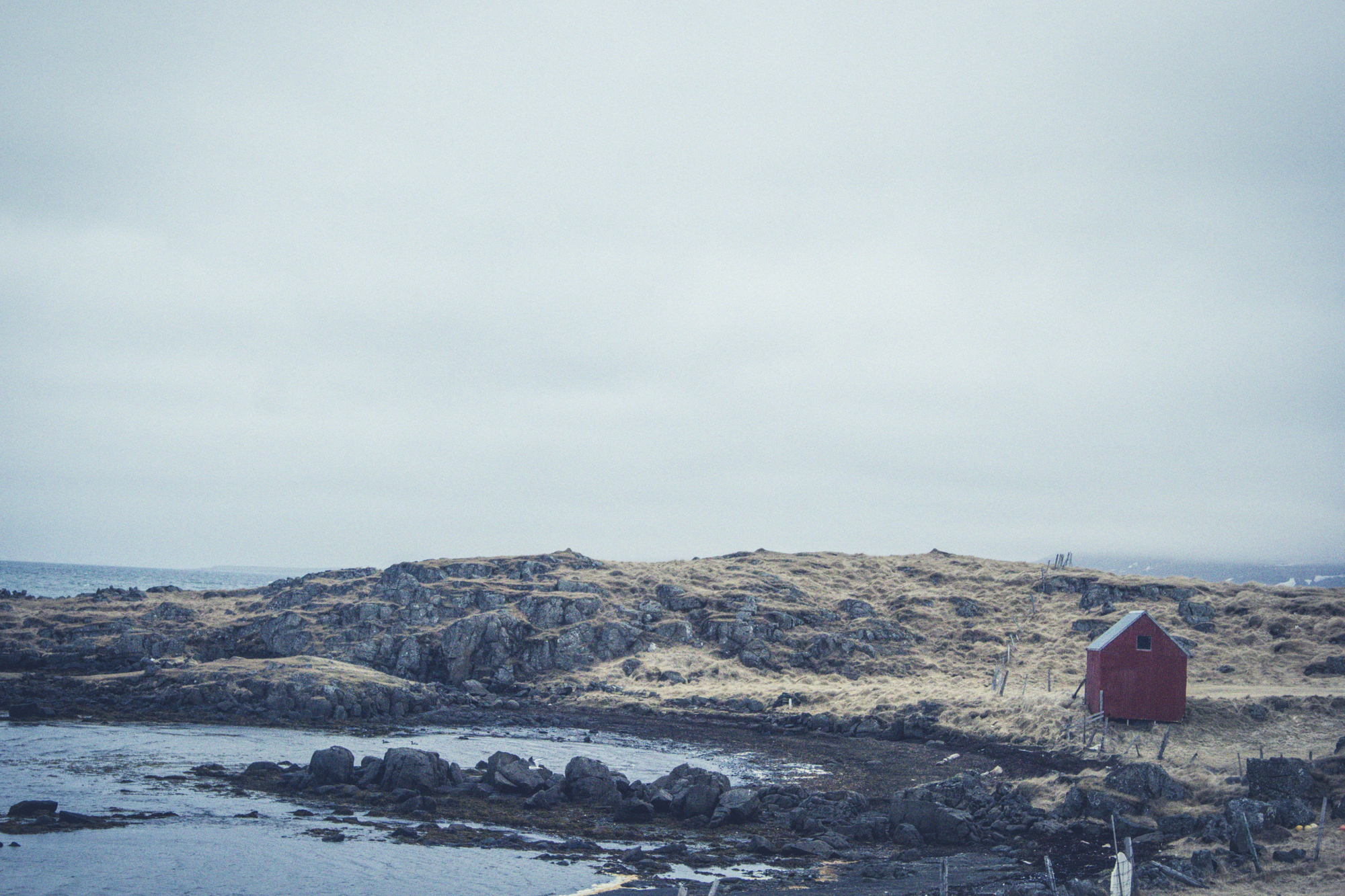 Forgotten-SeasideShackForsaken-HEYDT.jpg
