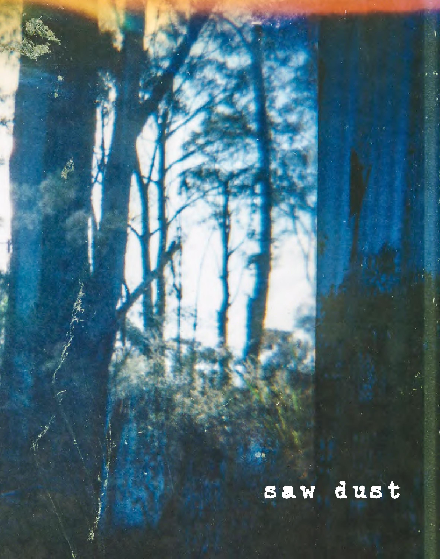 SawDust-Catalog-HEYDT-email-page-006.jpg