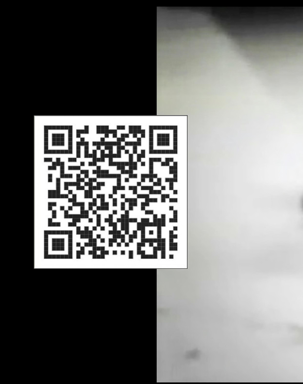 **Entropy-ArtistStatementBook-Original**-web-page-168.jpg