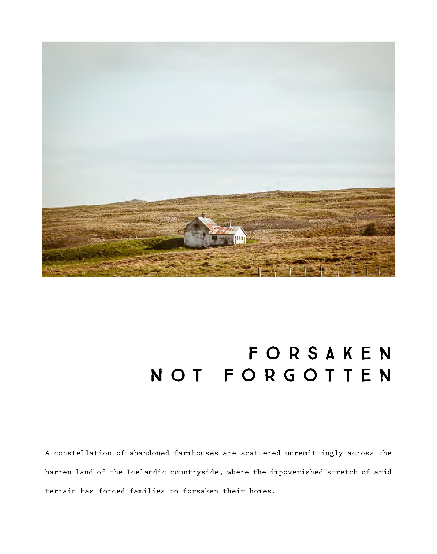 ForsakenNotForgotten-Catalog-HEYDT-page-004.jpg