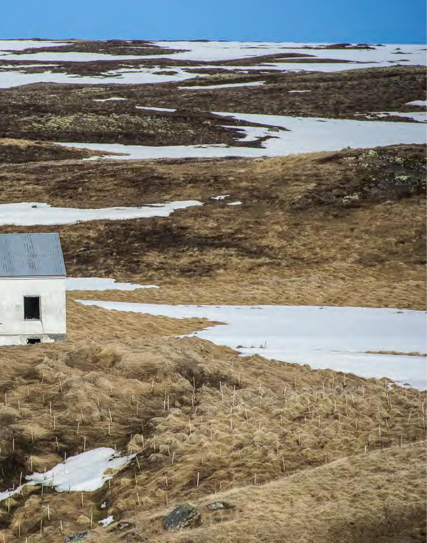 ForsakenNotForgotten-Catalog-HEYDT-page-015.jpg