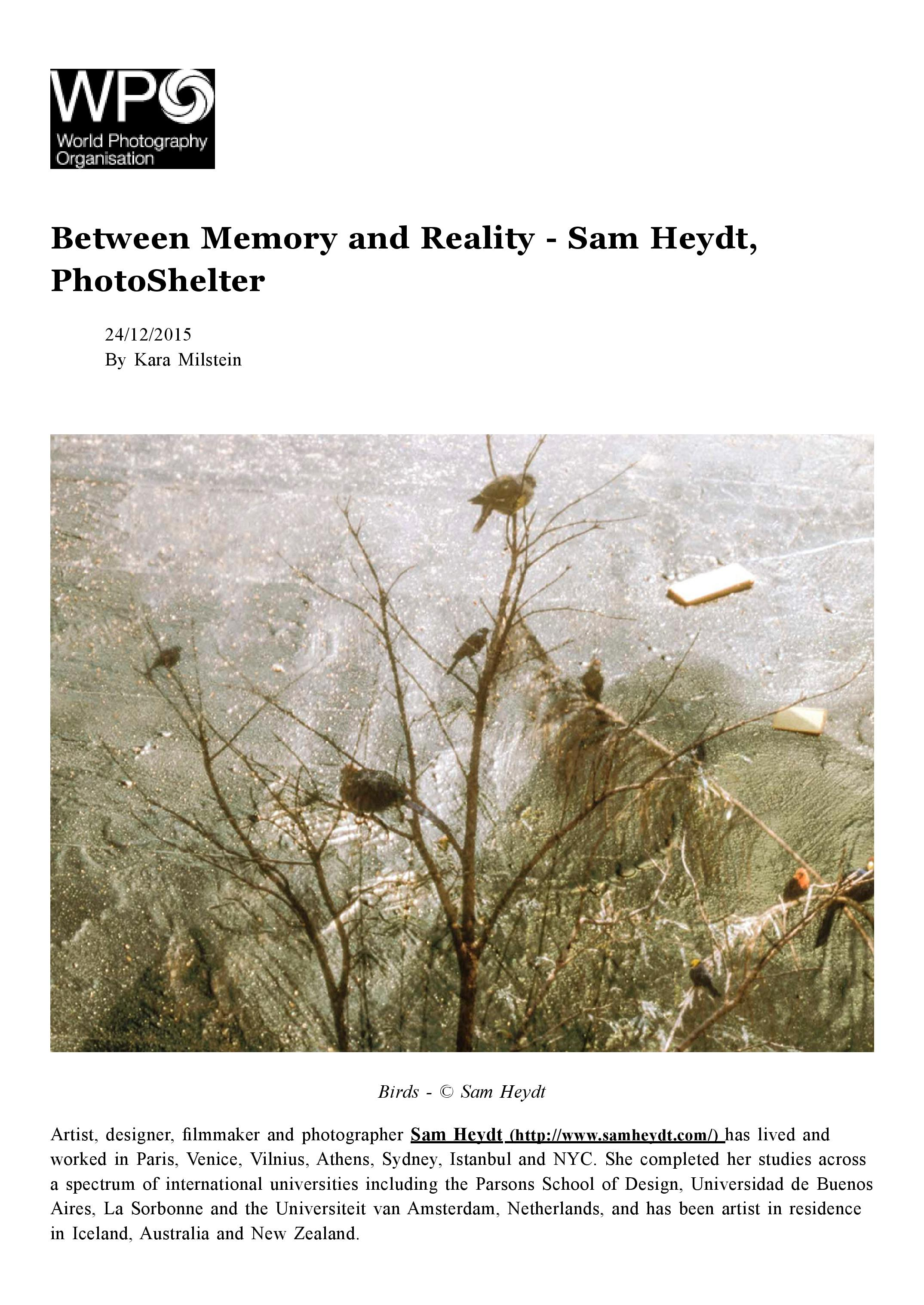 Between Memory and Reality - WPO-page-001.jpg
