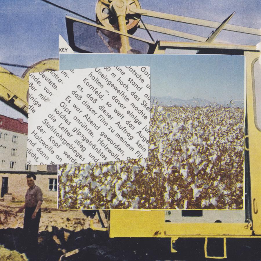 Cotton, Sam Heydt, MixedMedia, 45x45, $1500.jpg