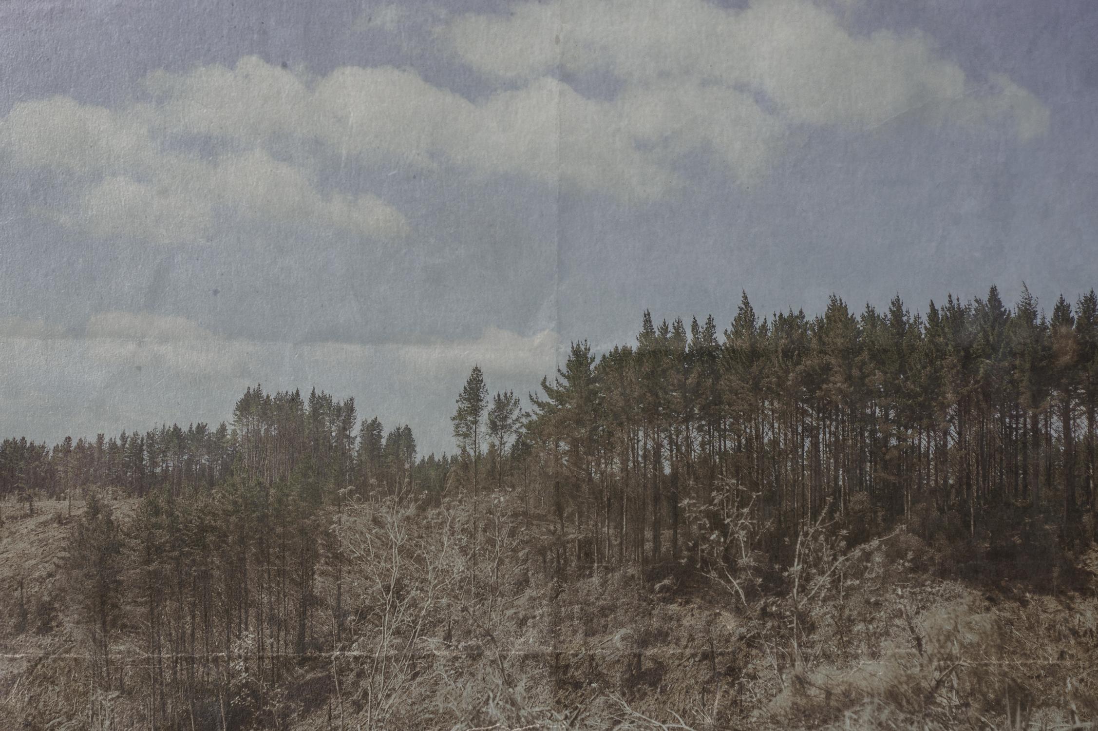 Rough-plaster-Edit.jpg