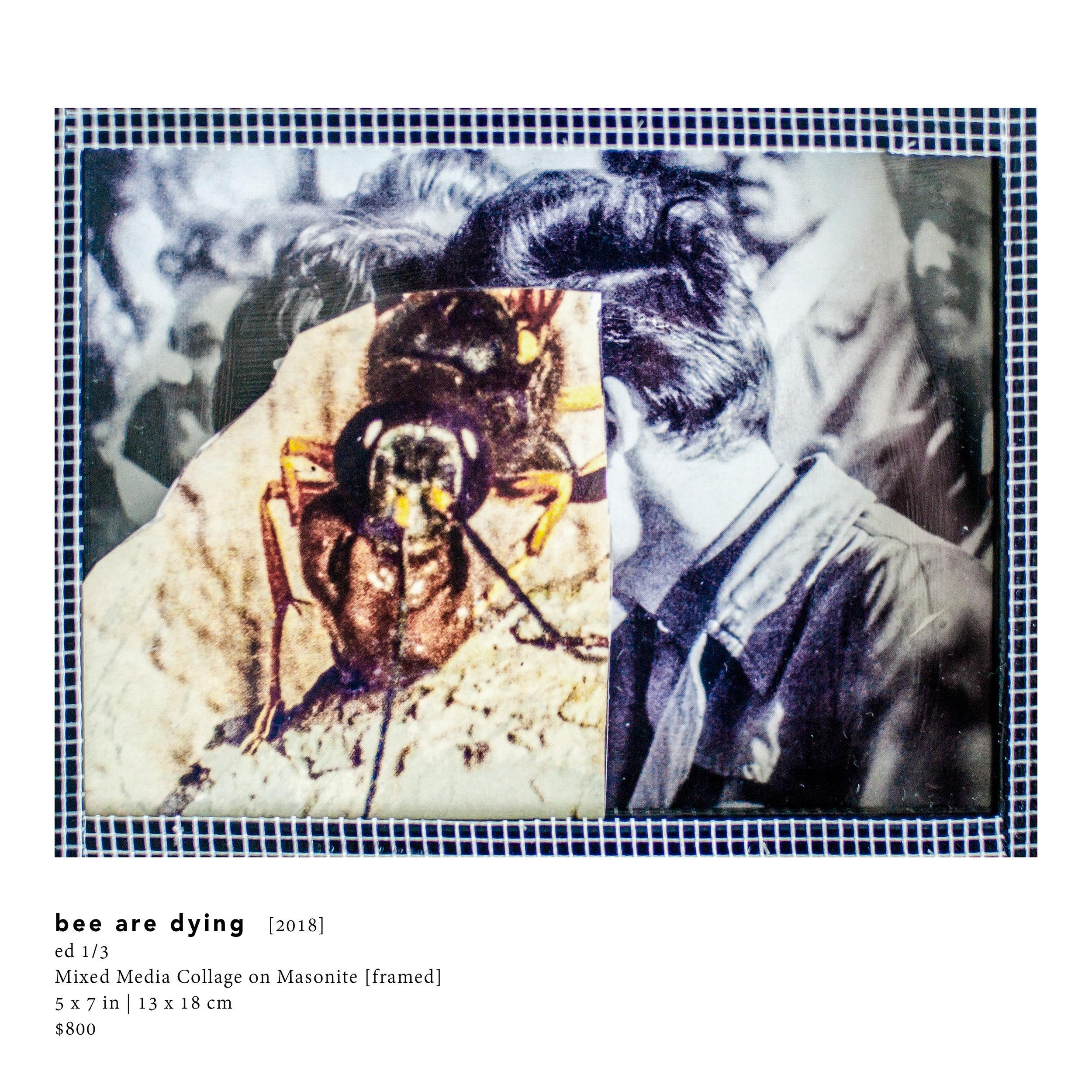 Faena-Inventory-HEYDT-March2019130.jpg